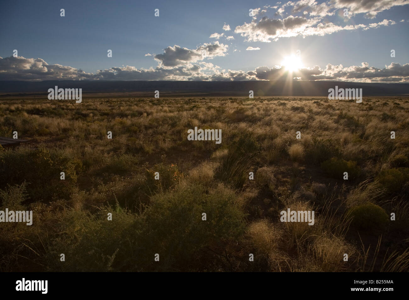 American prairie at sunset in Arizona, USA - Stock Image