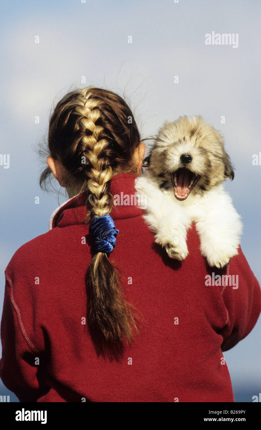Coton de Tulear (Canis lupus familiaris). Girl with yawning puppy on her shoulder Stock Photo
