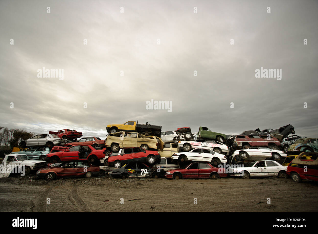 Car breakers yard New Zealand Cars stacked awaiting the crusher - Stock Image