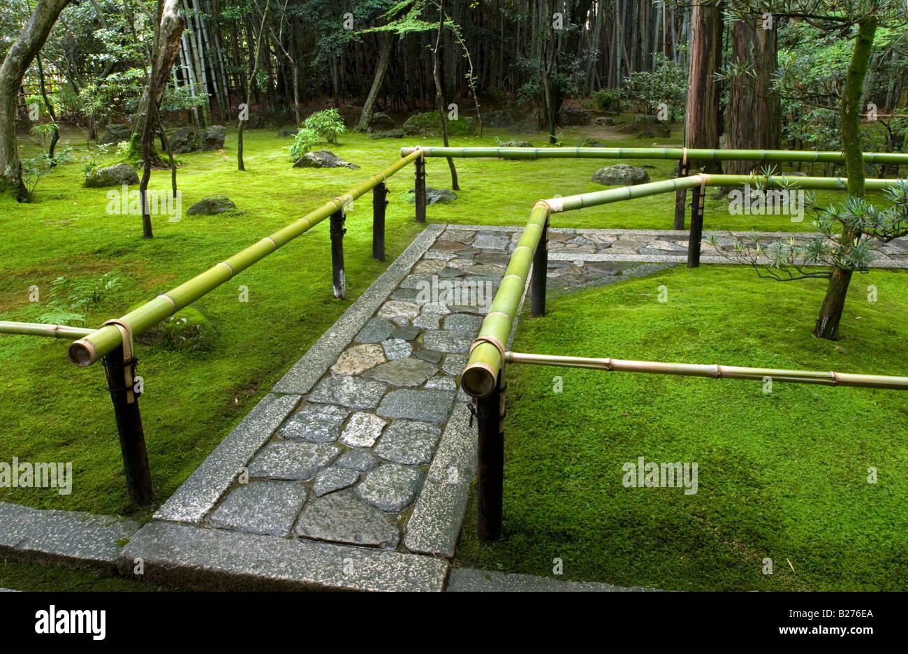 Rich moss growing beside pathway leading to entrance at Koto In Temple in Kyoto - Stock Image