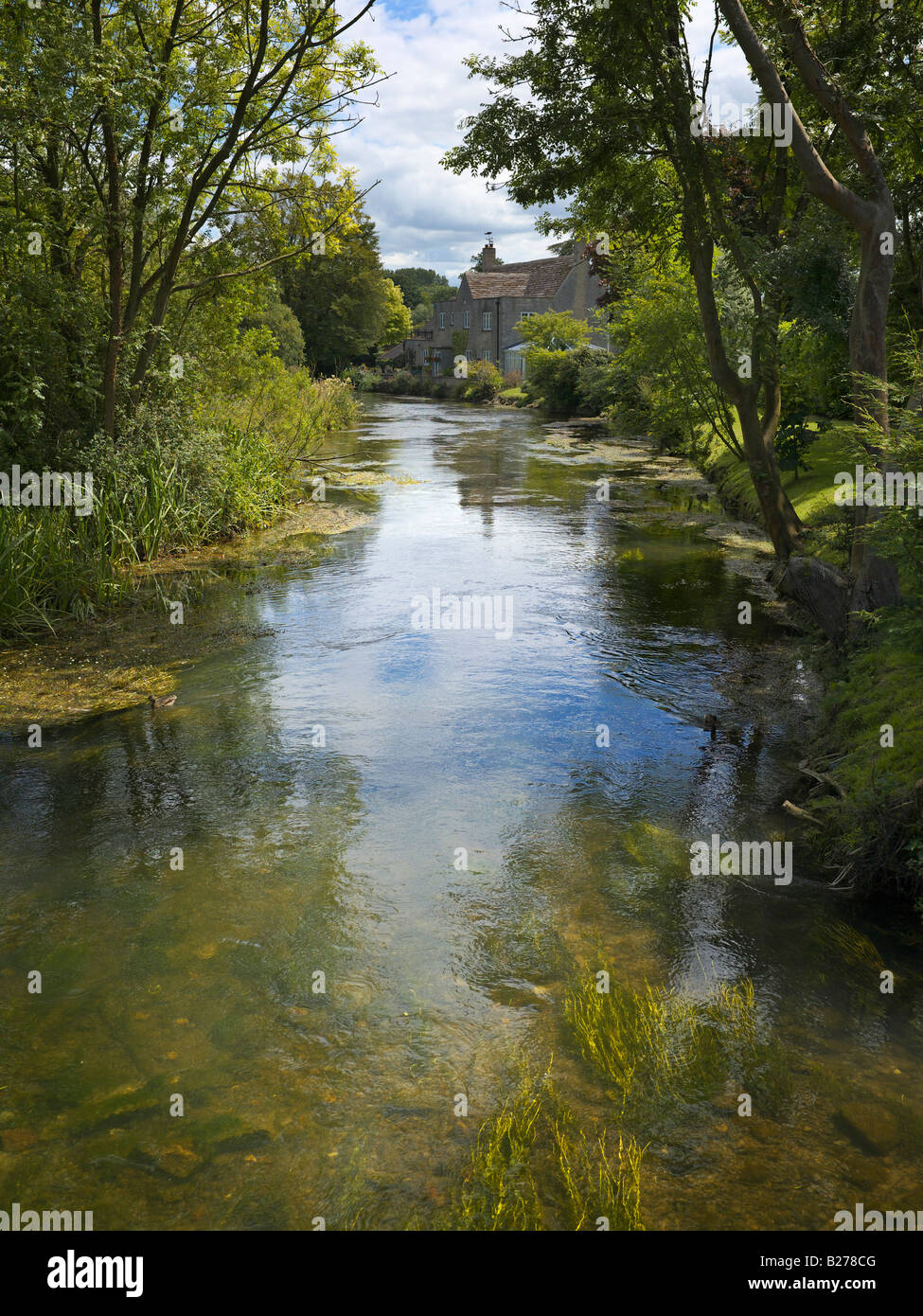 River Coln at Fairford in the Cotswolds - Stock Image