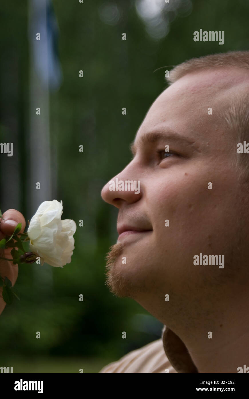 A man smells the scent of a white rose - Stock Image