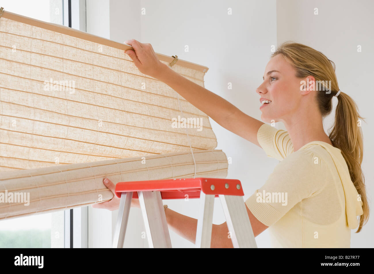 Woman hanging window blinds - Stock Image