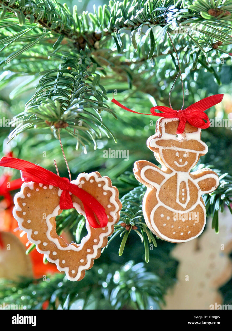 Painted gingerbread, christmas decoration settled on a christmas tree Stock Photo