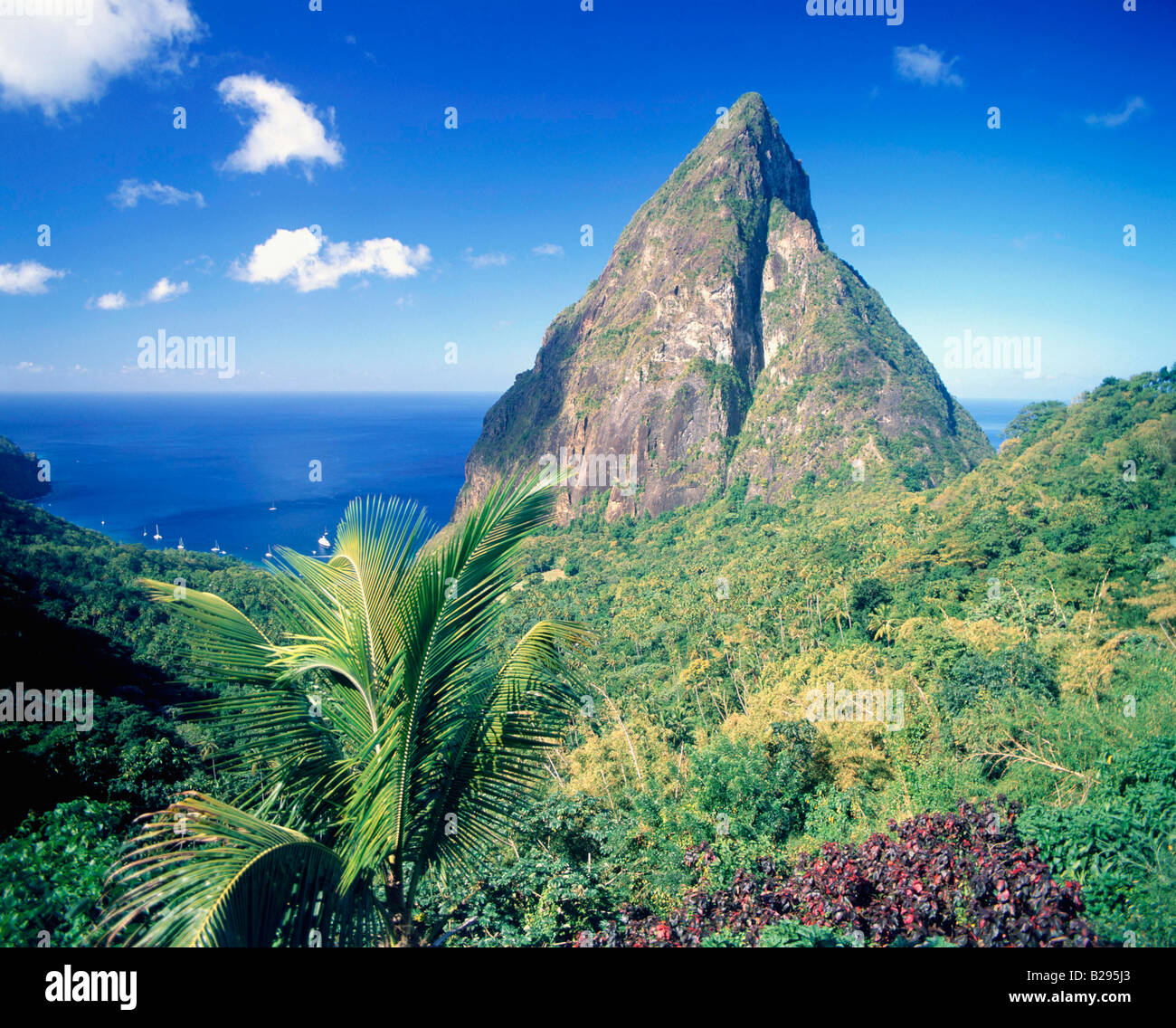 ST Lucia The Pitons Date 05 06 2008 Ref ZB726 114635 0020 COMPULSORY CREDIT World Pictures Photoshot - Stock Image