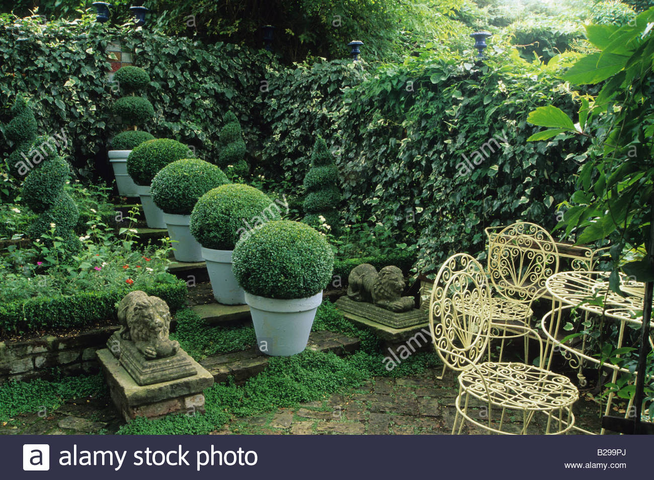 Private Garden London Design Jonathan Baillie Shady Garden Boxwood Topiary  Spheres In Blue Painted Pots Ivy Covered Walled Gdn