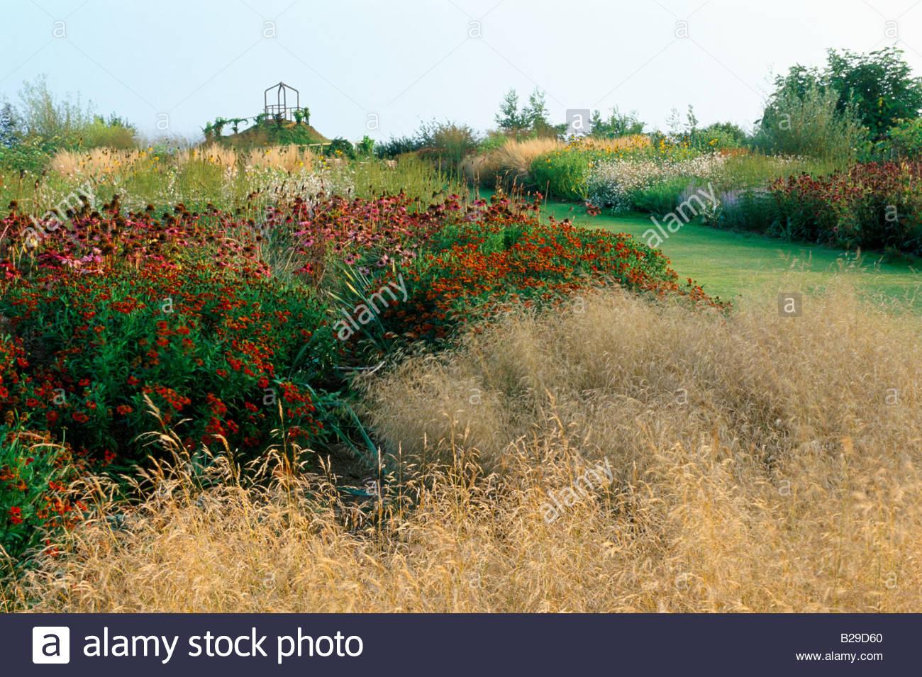 Deschampsia cespitosa goldtau stock photos deschampsia for Piet oudolf fall winter spring summer fall