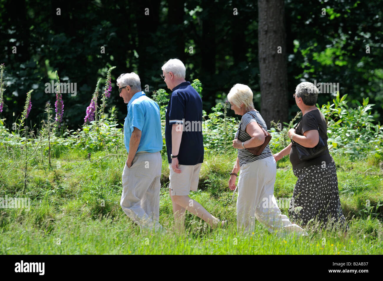 A group of friends out for a casual stroll along the many paths available in the beautiful Upper Derwent Valley - Stock Image
