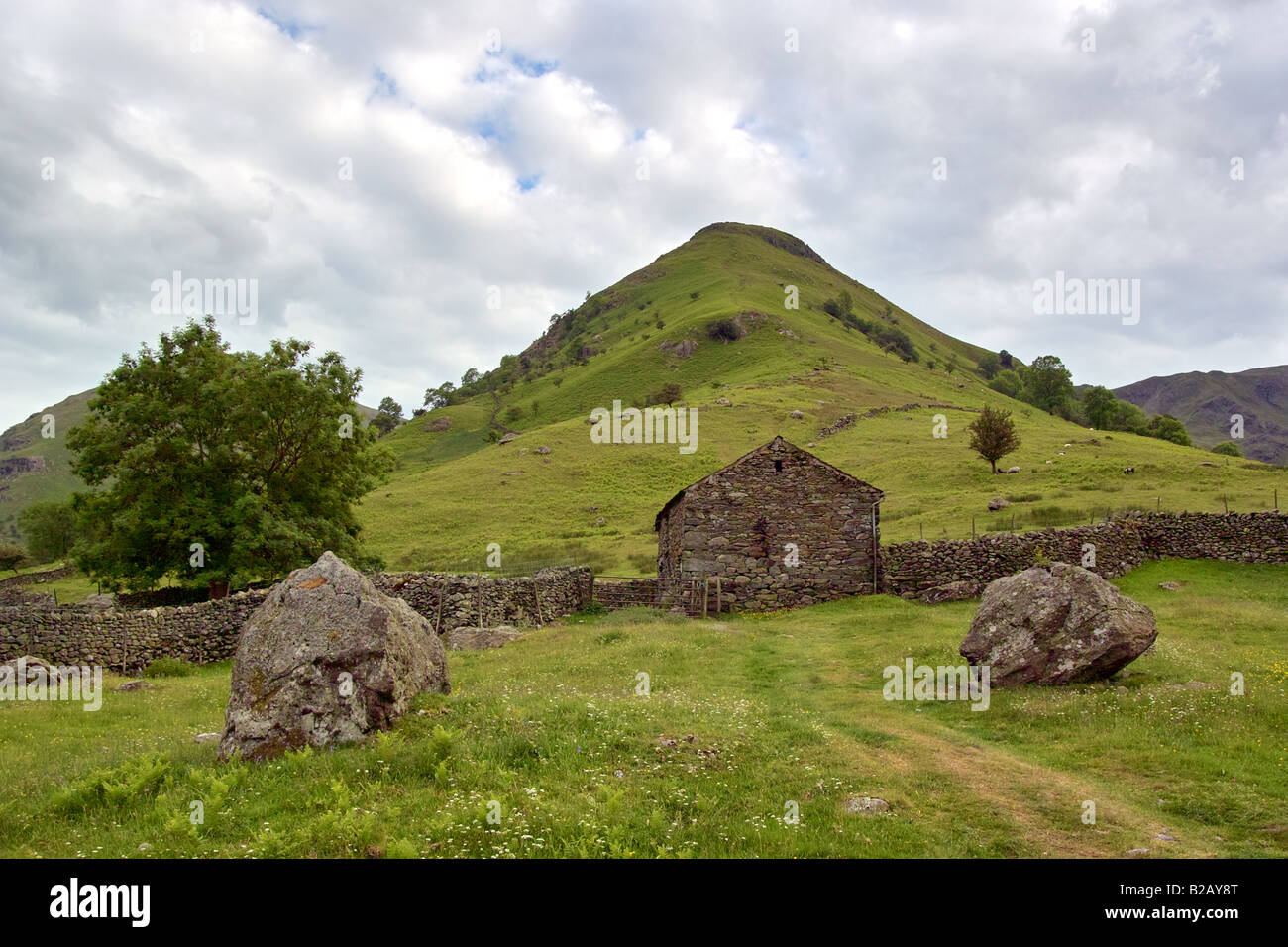 High Hartsop Dodd in the Lake District, Cumbria, England. - Stock Image