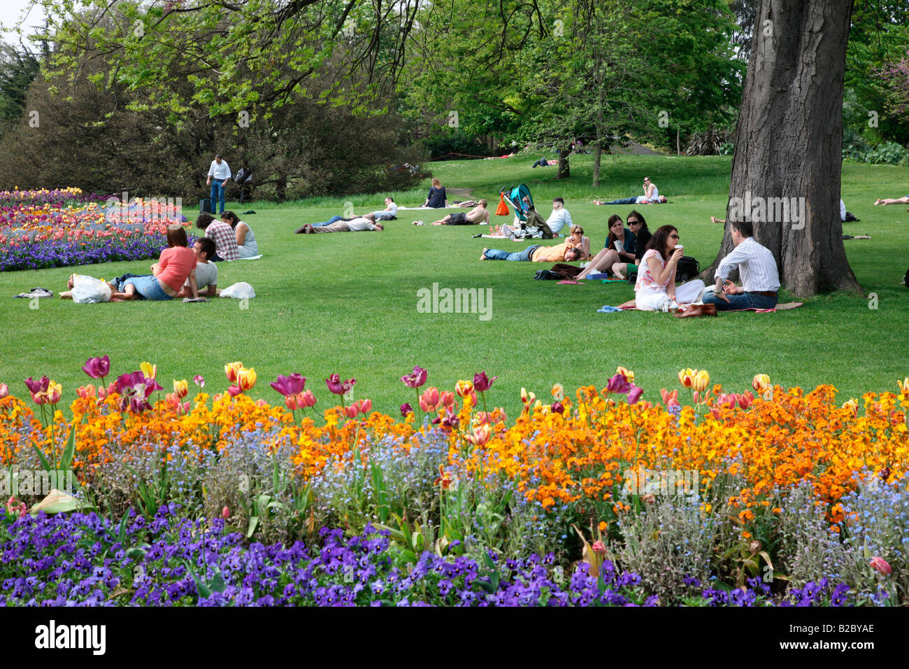 Leisure activities in Hyde Park, London, England, Great Britain, Europe - Stock Image