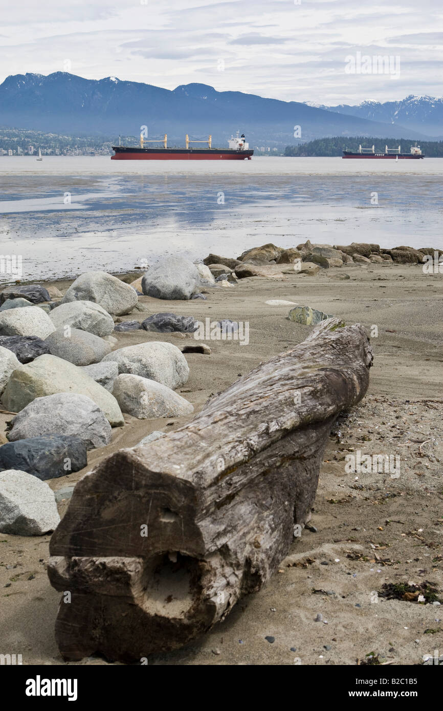 Jericho Beach Park, oil tanker anchoring, skyline of Vancouver in the back, British Columbia, Canada, North America - Stock Image