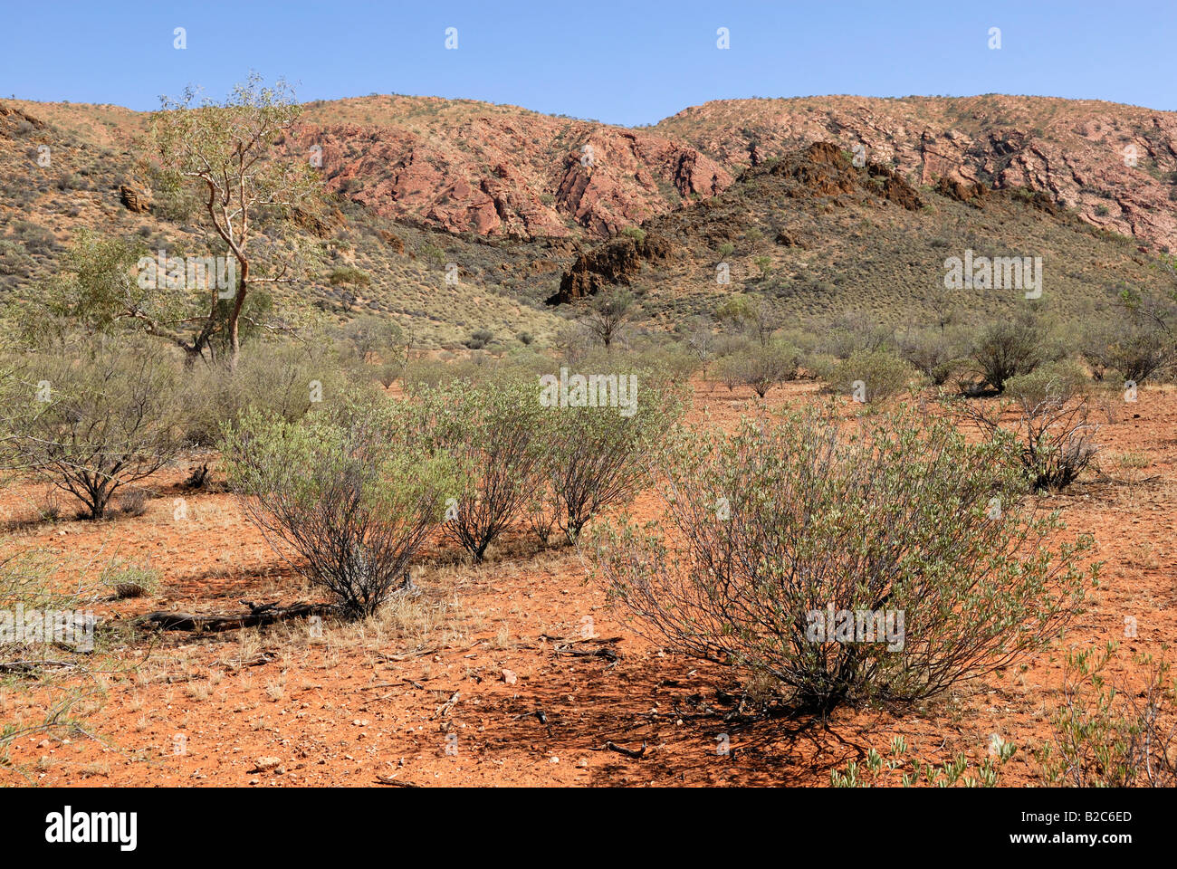 Outback landscape, East Macdonnell Ranges, Northern Territory, Australia - Stock Image