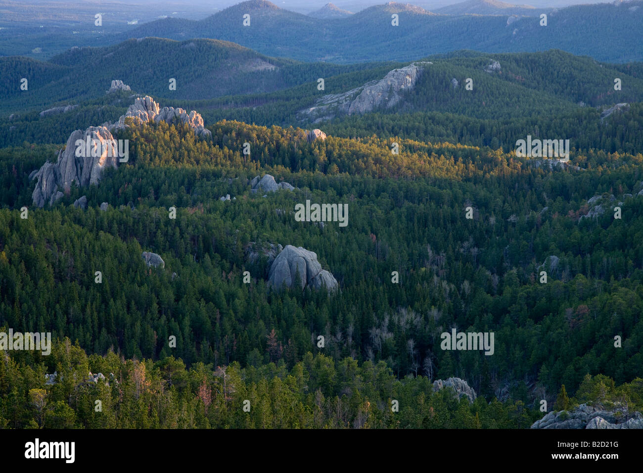 Black Hills from Little Devils Tower, Custer State Park and Black Hills National Forest, South Dakota - Stock Image