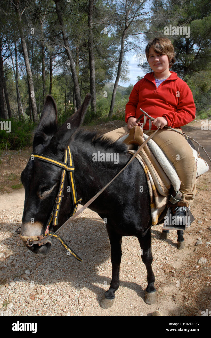young girl riding a donkey, near Campell, Marina Alta, Alicante Province, Comunidad Valenciana, Spain - Stock Image