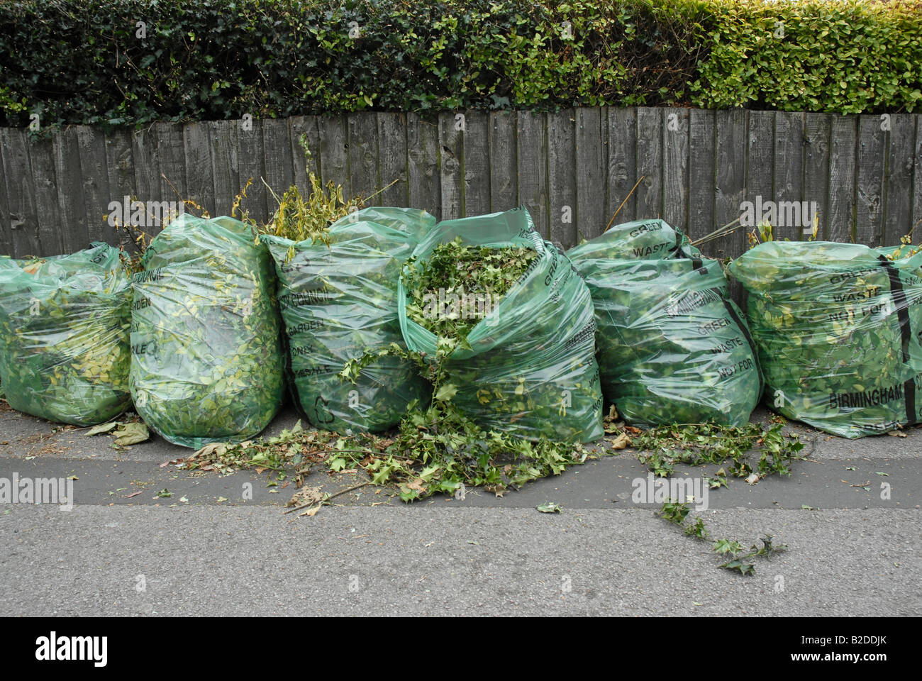 waste environment green garden council bags recycle hedge cuttings trim grass lawn rubbish collection collect suburban - Stock Image