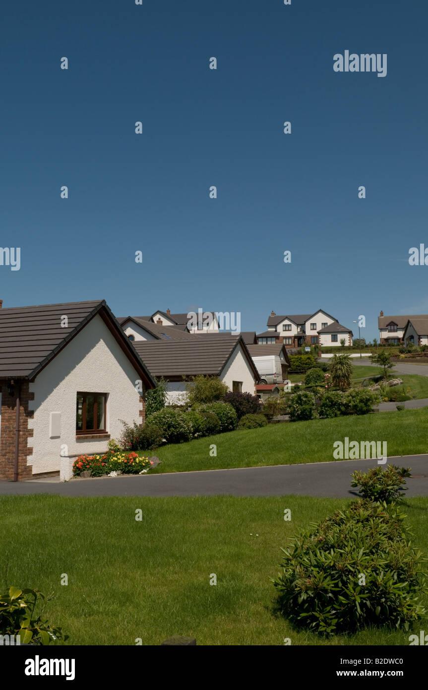 Detached new houses on suburban housing estate in Llanfarian near Aberystwyth Wales UK - Stock Image