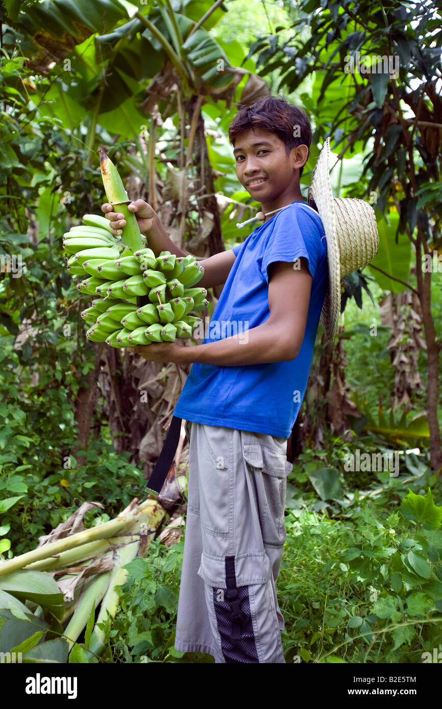 A Filipino boy with a bunch of fresh bananas in the jungle near Mansalay, Oriental Mindoro, Philippines. - Stock Image