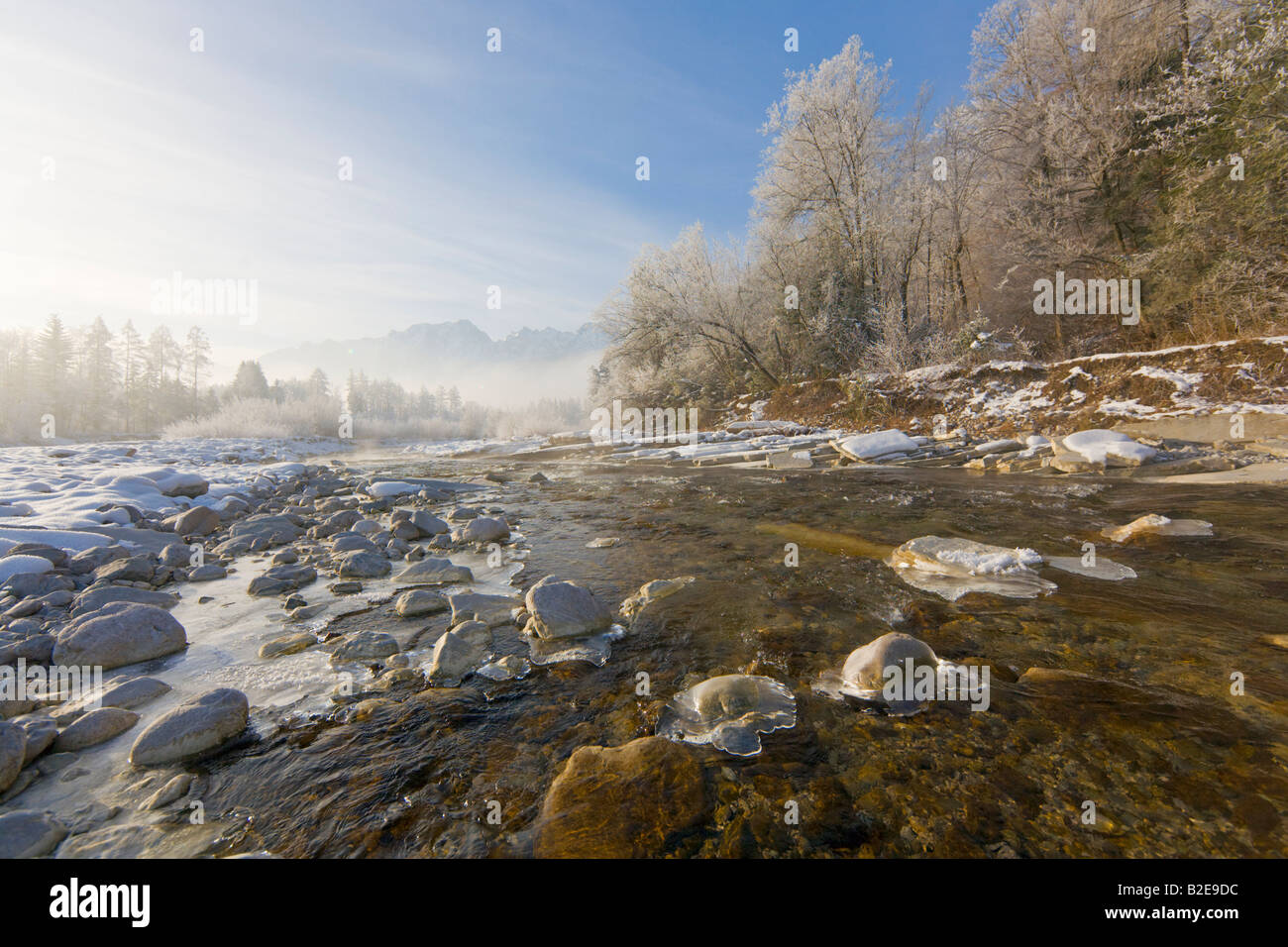 River flowing through forest, Taugl, Hoher Goell, Tennengau, Berchtesgaden Alps, Salzburg, Austria Stock Photo