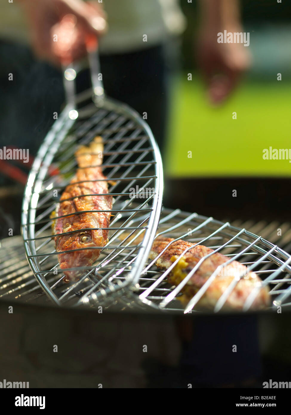 Close-up of fish on barbecue grill - Stock Image