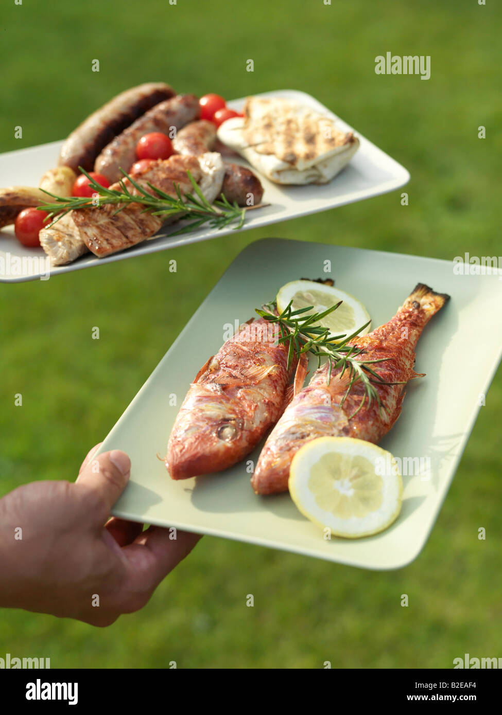 Close-up of person's hand holding grilled food on plates - Stock Image