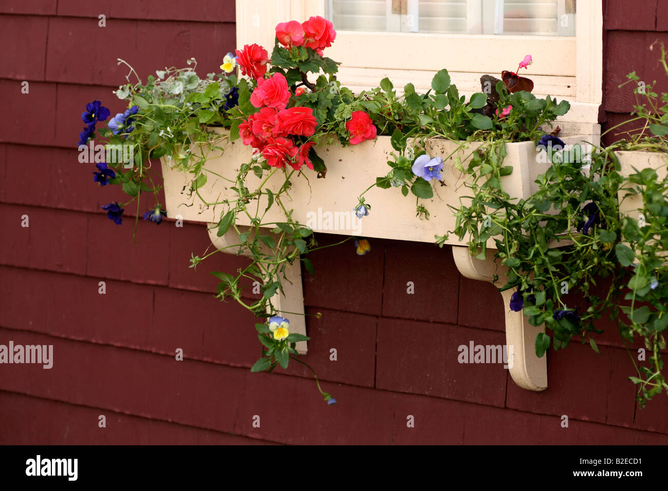 a flower box below a window outside of a house - Stock Image