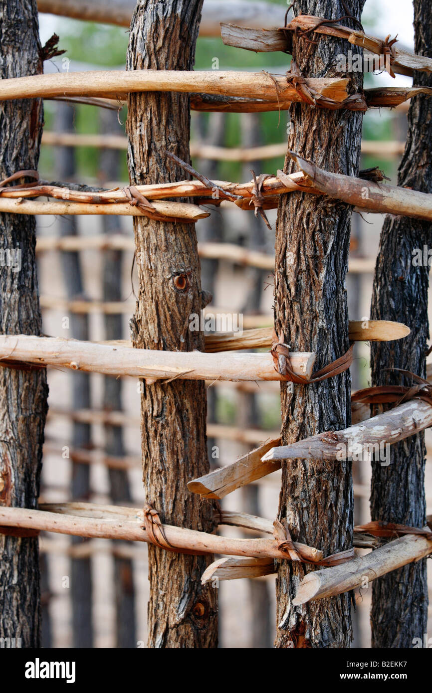 The start of a wall of a hut during construction made from mopane poles and cross sticks tied together with strips - Stock Image