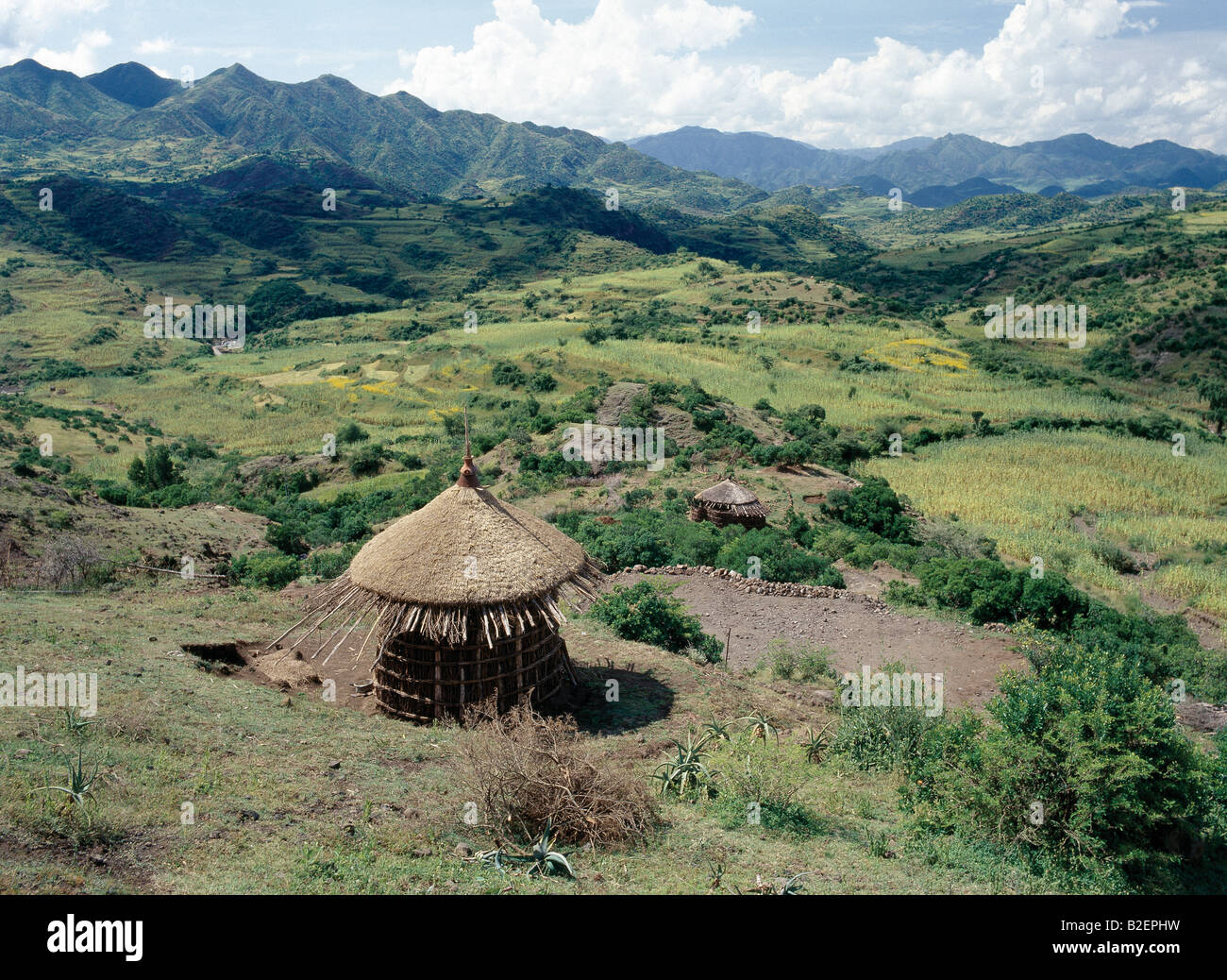 Scenery between Desse and Bati in the Welo Province of northern Ethiopia with an unfinished thatched house in the - Stock Image