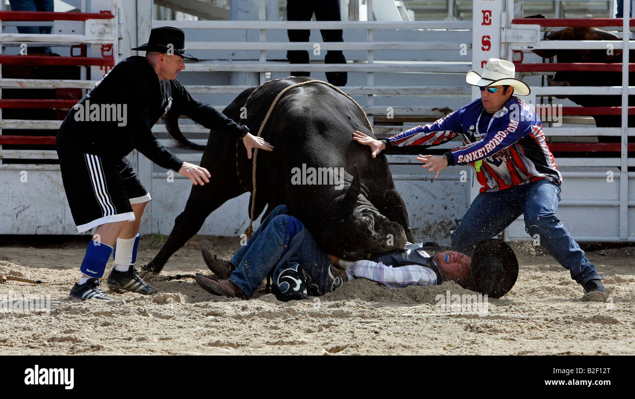 Rodeo School Bullriding Stock Photos Amp Rodeo School