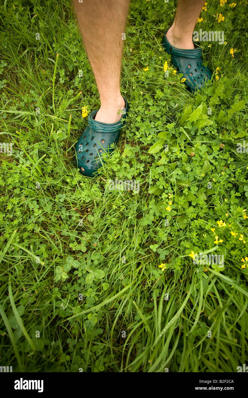 Green grass with human feet walking in crocs in a meadow field park in New England America during a weekend getaway Stock Photo