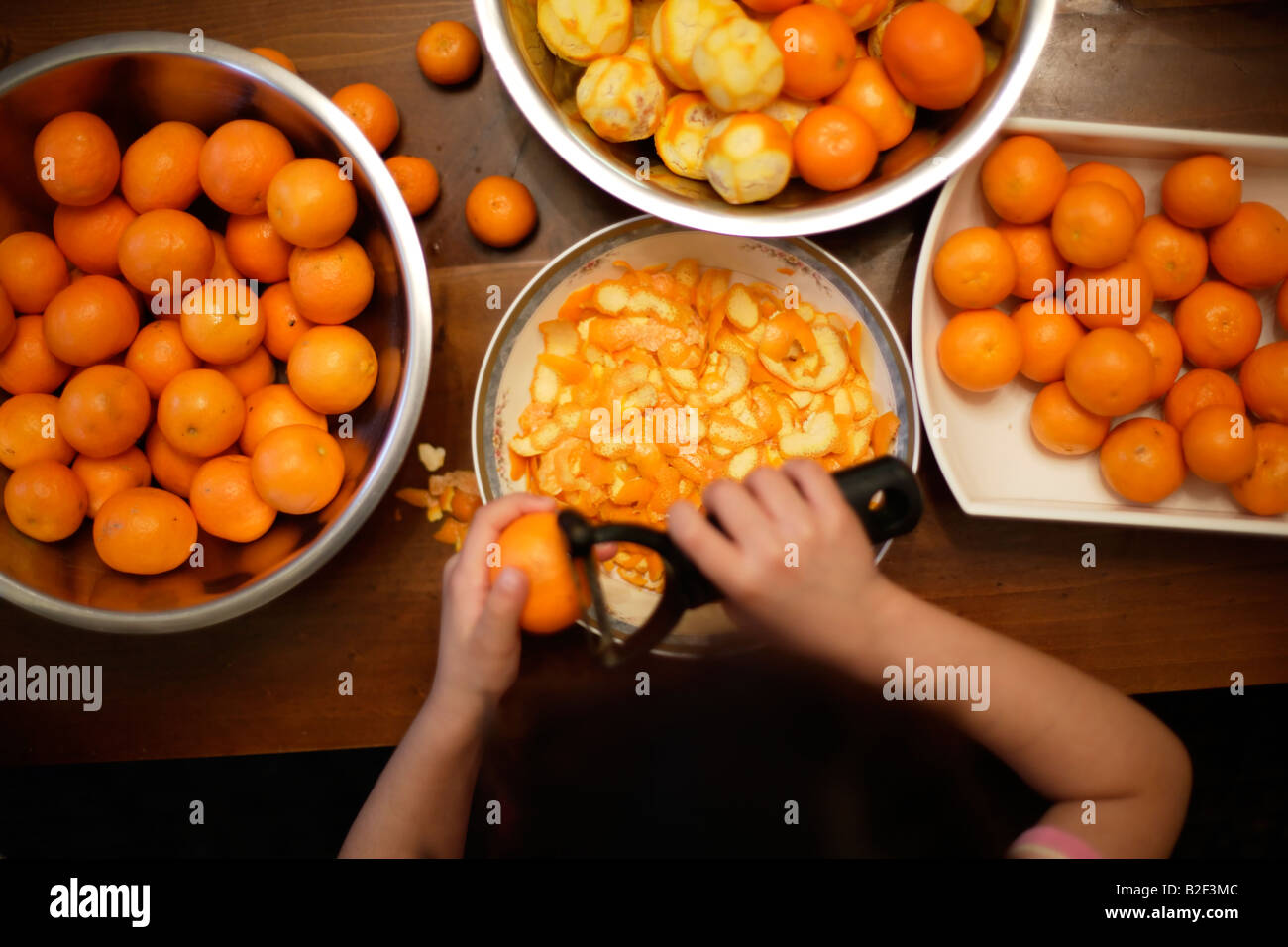 Five year old girl peels oranges collected from the garden to make marmalade - Stock Image