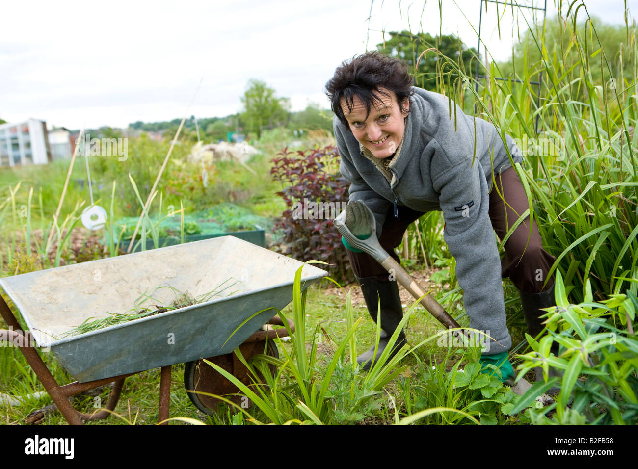 lady gardener digging in her allotment plot - Stock Image