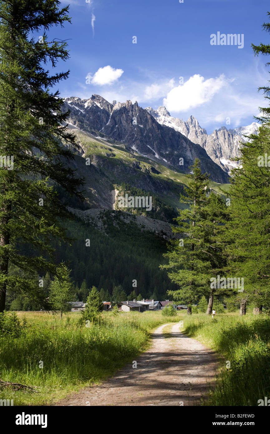Val Veny: path in the forest. Mont Blanc, Monte Bianco, Italian side, Courmayeur, Italy - Stock Image