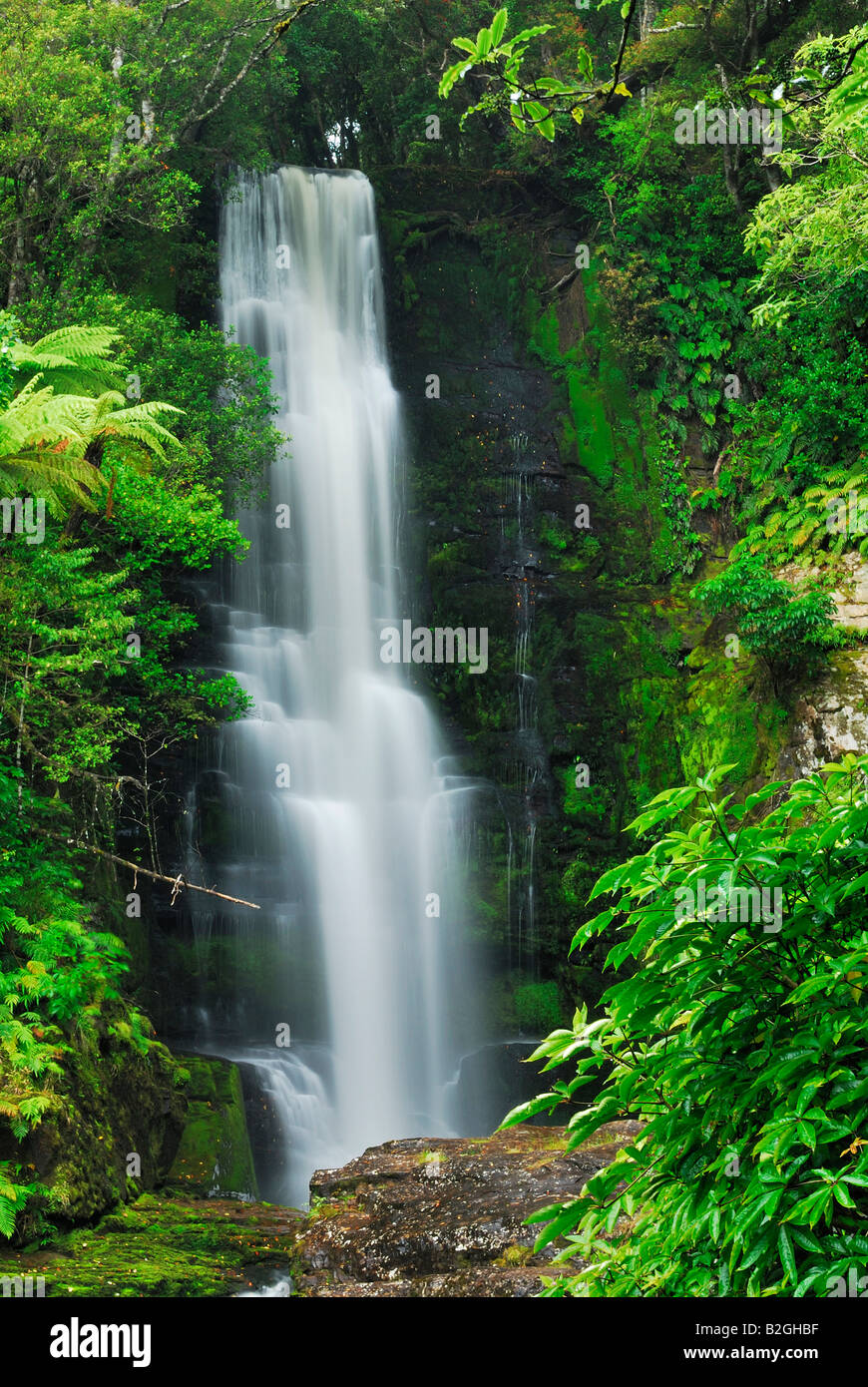 mac lean falls river mountain torrent cascade forest jungle south island new zealand - Stock Image