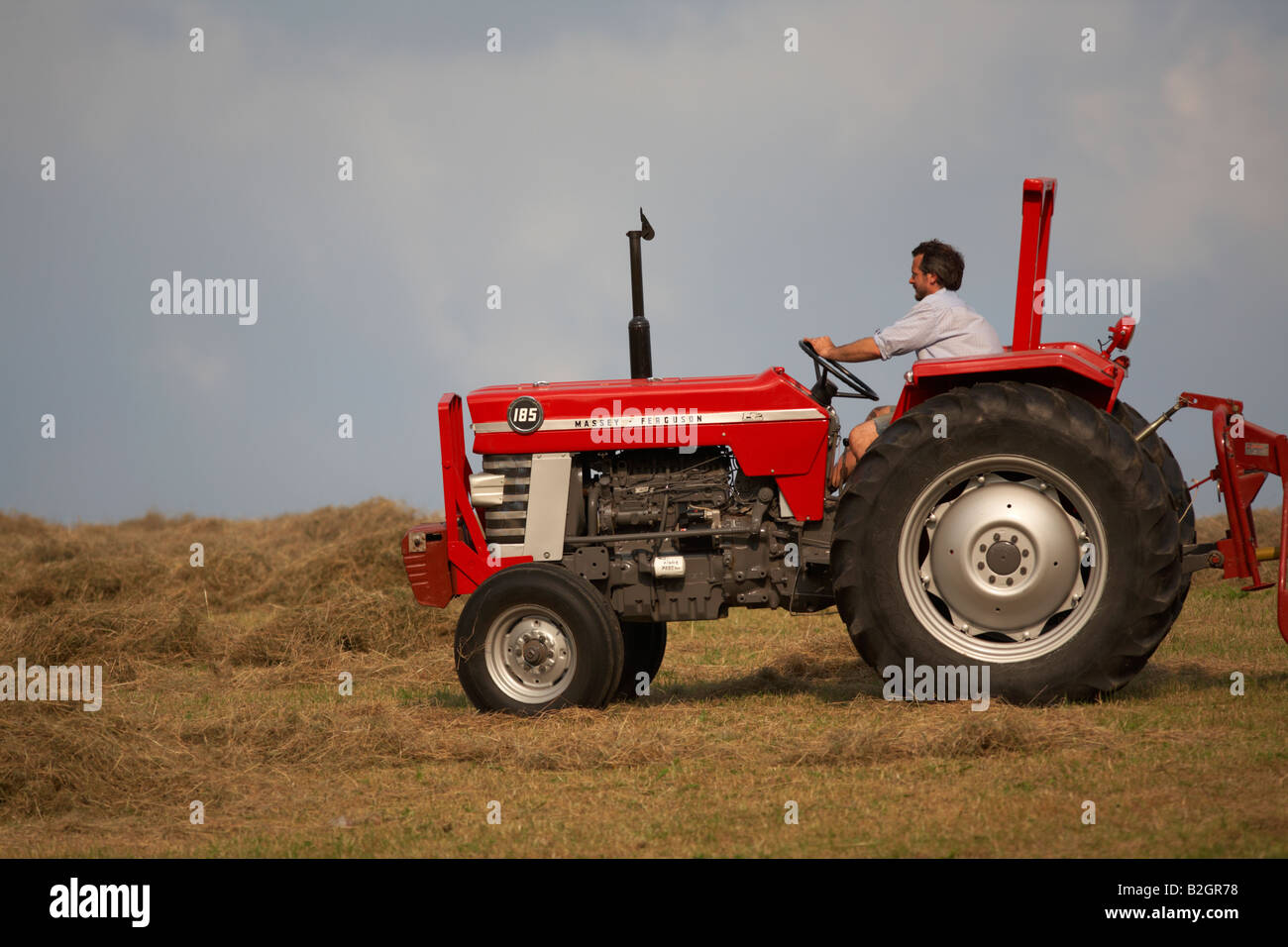 farmer sitting on a massey ferguson 185 old tractor in a field making hay  county down northern ireland