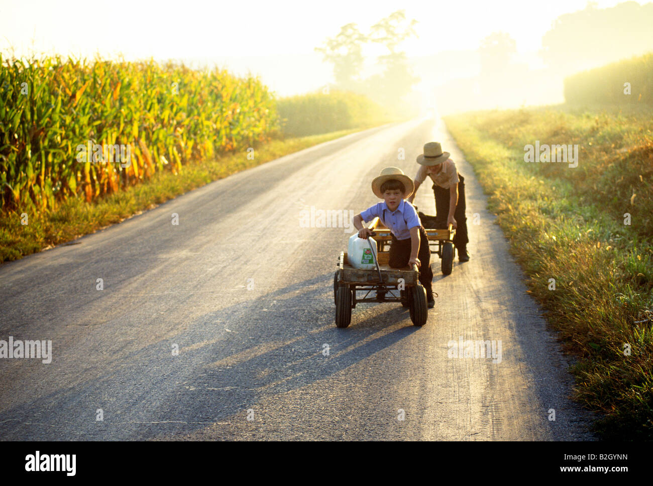 Two Amish boys in traditional plain clothing pushing wagons with fresh milk down a rural country lane, Lancaster - Stock Image