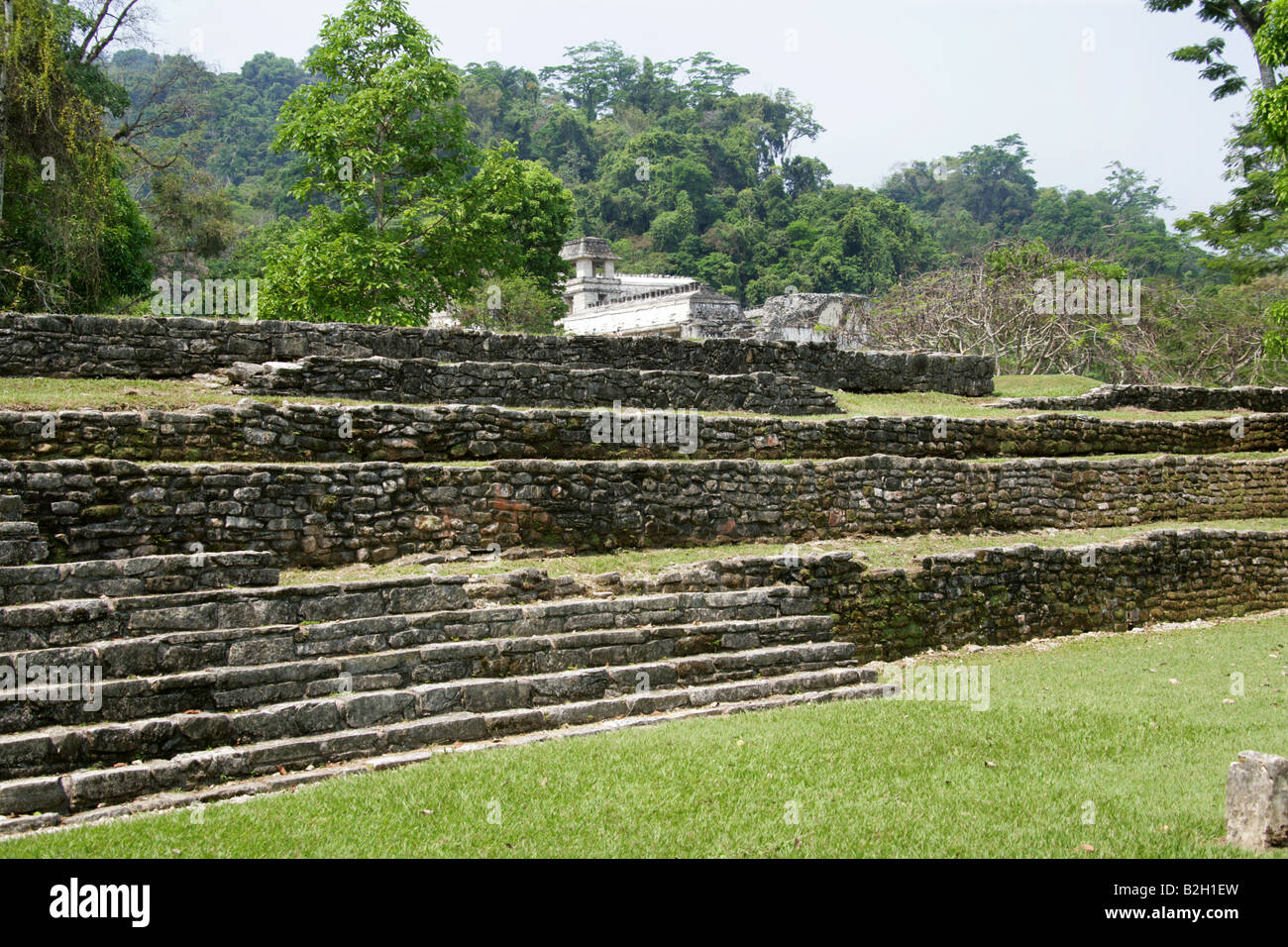 Stone Terraces and Palace, Palenque Archeological Site, Chiapas State, Mexico Stock Photo