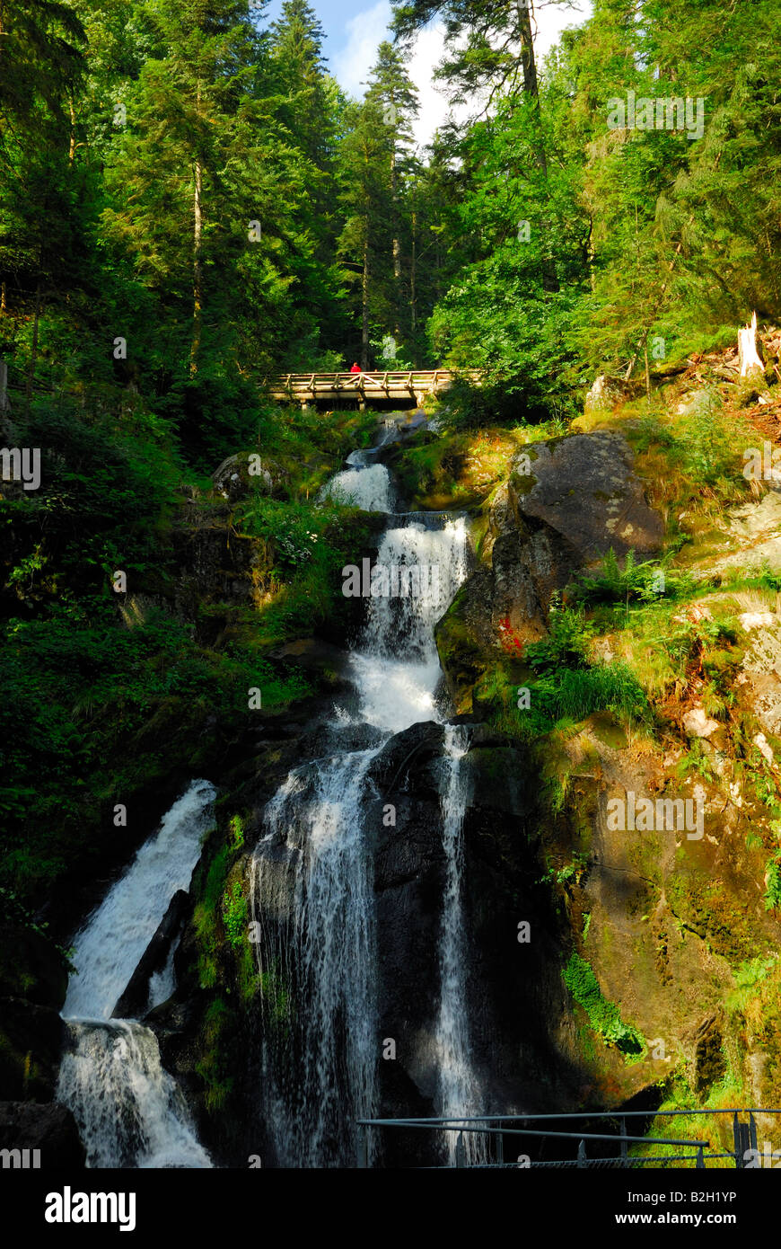 The Triberg Wasserfall waterfall where the Gutach River plunges over a series of cascades two kilometers long and - Stock Image