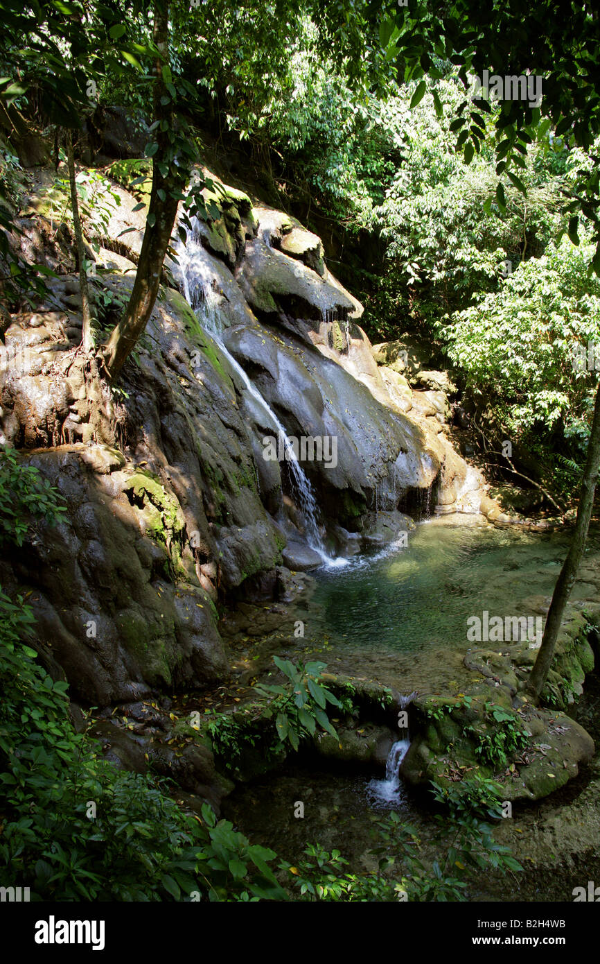 Jungle Stream and Pool at Palenque Archeological Site, Chiapas State, Mexico Stock Photo