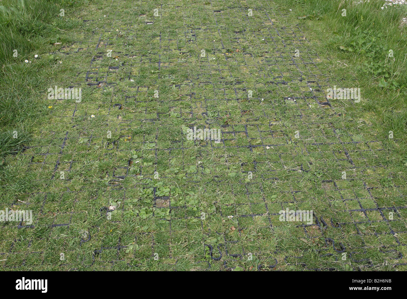 GRASS PATH STRENGTHENING USING PLASTIC CELLS - Stock Image