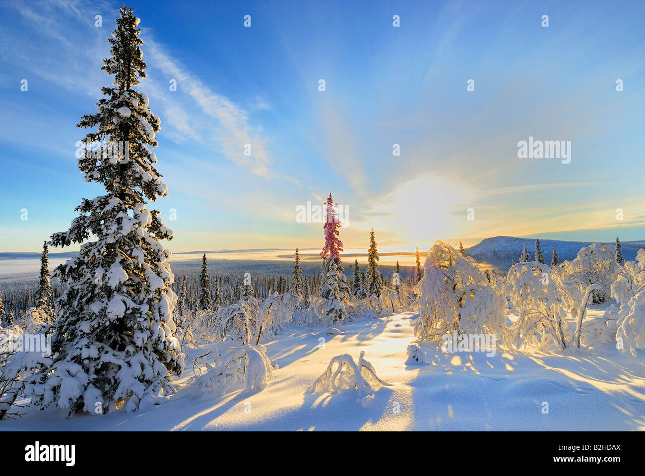 wintry landscape snow covered stubba nature reservatoin Laponia lapland norrbotten sweden scandinavia europe winter Stock Photo