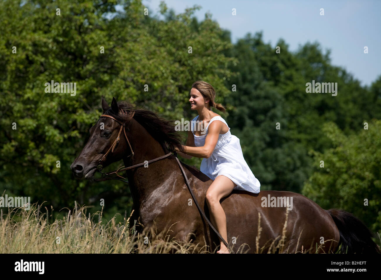 Young Woman In Summer Dress Riding Horse Stock Photo Alamy