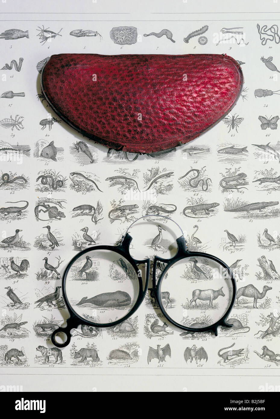 medicine, ophthalmology, glasses, pince-nez with case, late 19th century, on steel engraving by Henry Winkles, circa Stock Photo