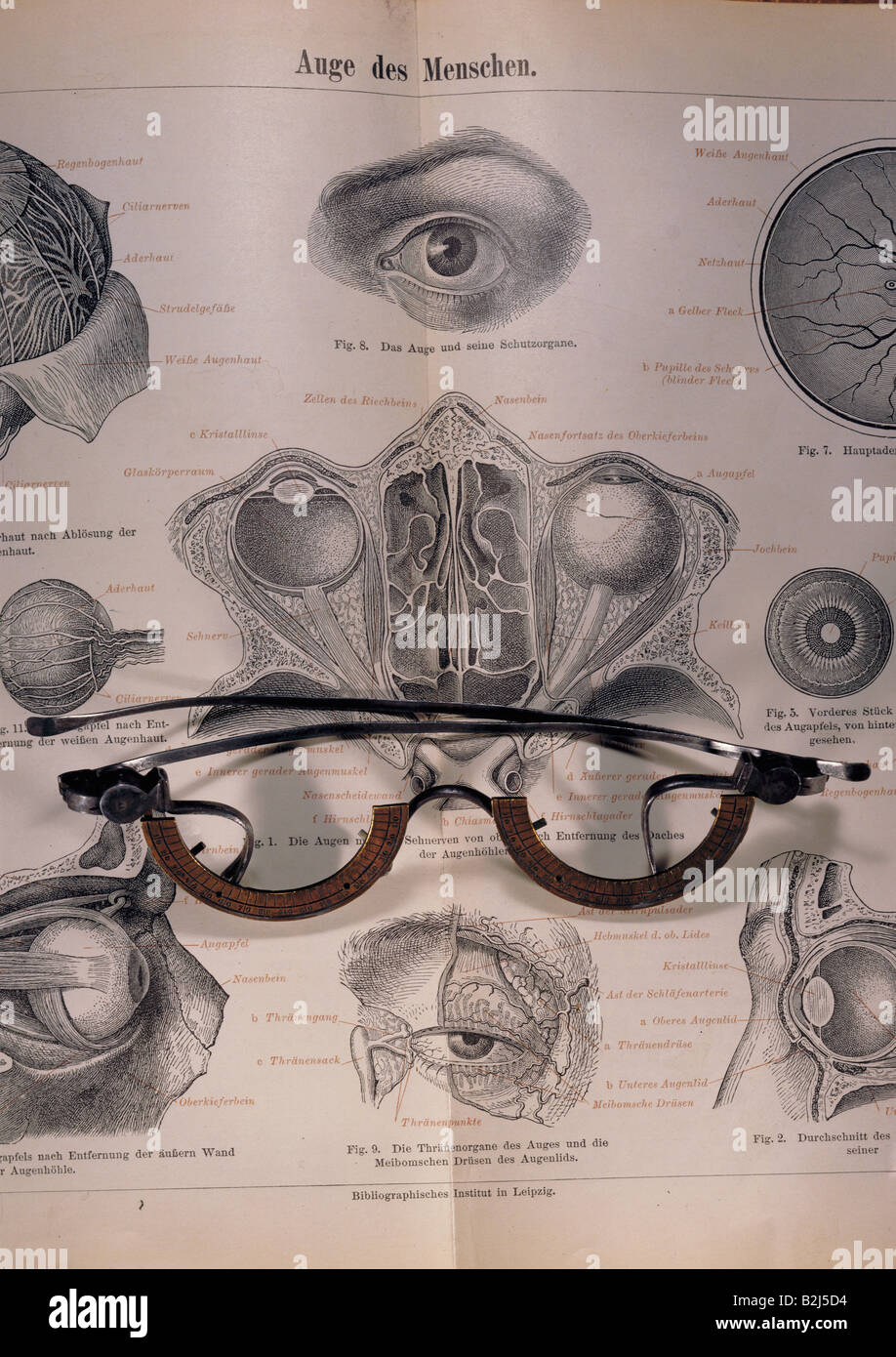 medicine, ophthalmology, frame to measure the strength of glasses, tableau, human eye, Germany, early 20th century, - Stock Image