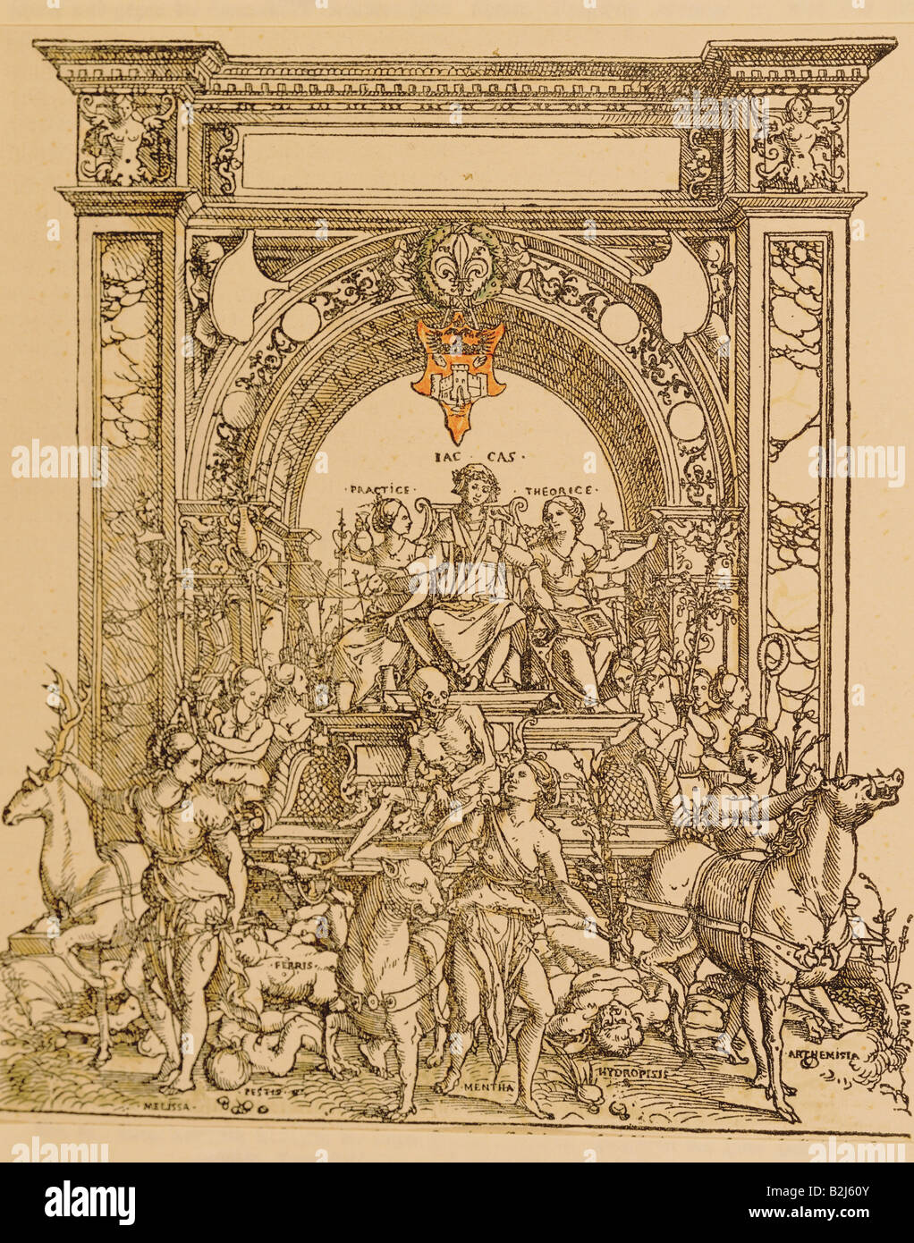 medicine, allegories, successes of the physician Jacobus Castricus ald Italian thriumphal procession, woodcut by - Stock Image