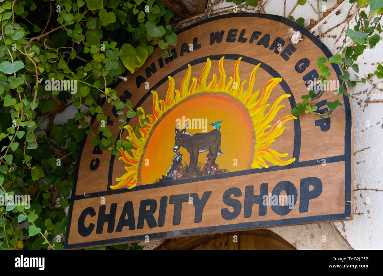 Charity shop sign for animal welfare group in Malia Old Town on the Greek Mediterranean island of Crete GR EU - Stock Image