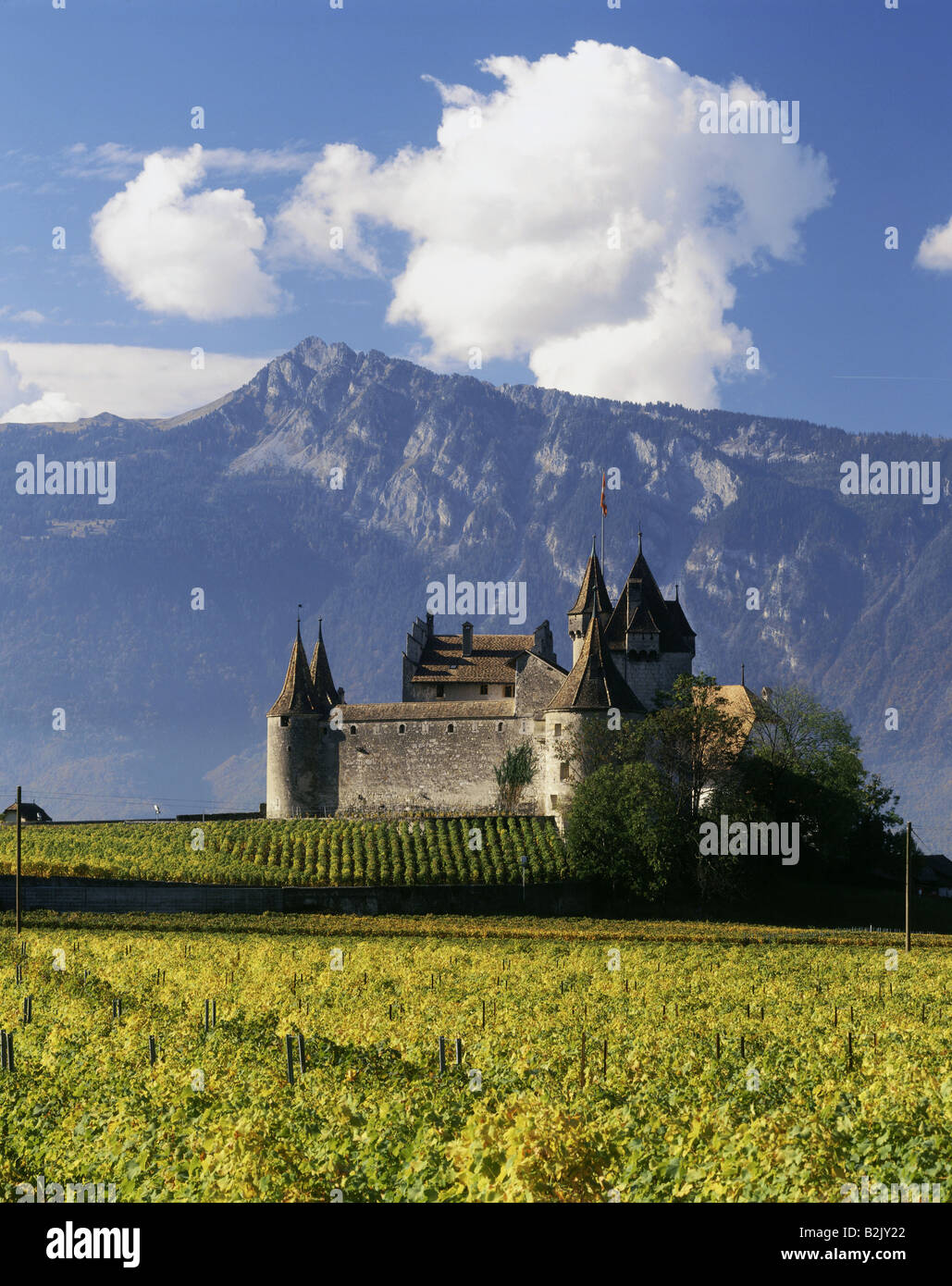 geography / travel, Switzerland, Vaud, Aigle, castles, Additional-Rights-Clearance-Info-Not-Available - Stock Image