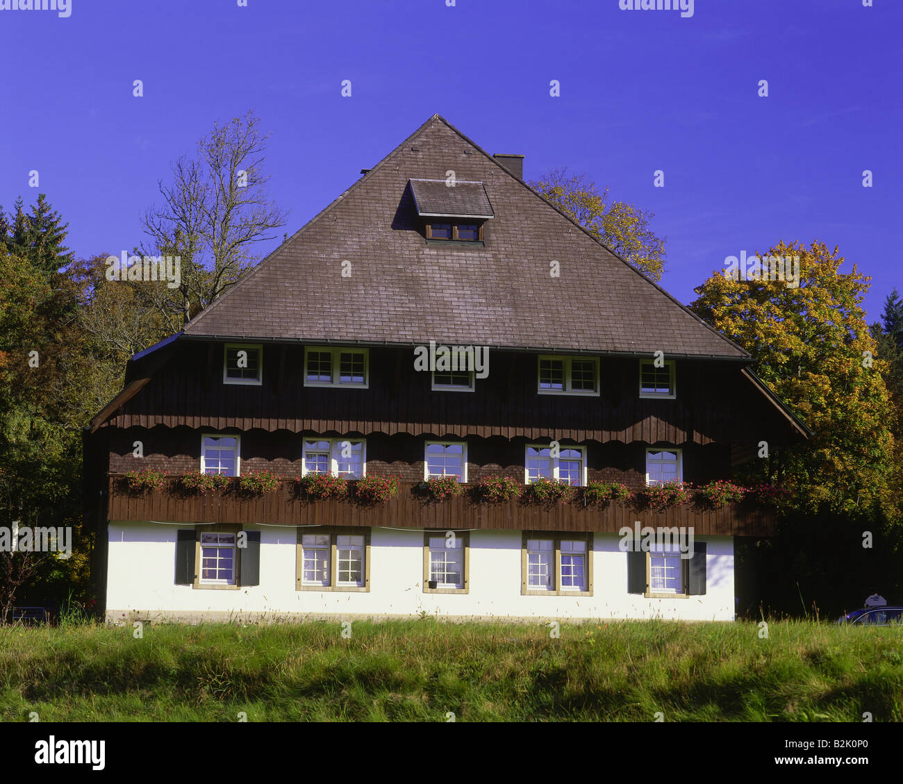 architecture, farmhouses, Germany, Baden-Wuerttemberg, Black Forest House in fall, exterior view, Hinterzarten, - Stock Image