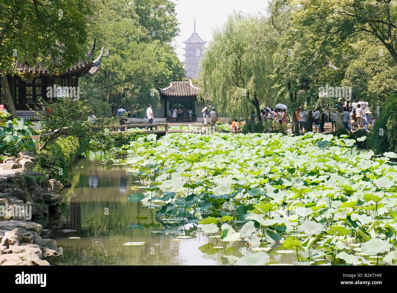 China, Suzhou, Humble Administrator's Garden, Zhouzheng Yuan - Stock Image