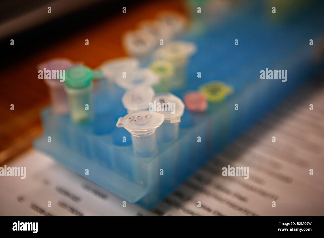 Laboratory bench equipment for DNA analysis Samples are contained in small plastic phials with caps stored in plastic - Stock Image