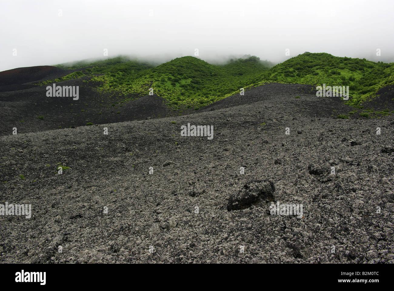 Slope of volcano Tya Tya, Kunashir island, Kuril islands Far East of Russia. - Stock Image
